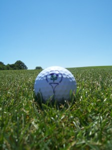 golf course 2006C 061